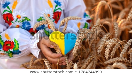 Ukraine flag on shirt Stock photo © fuzzbones0