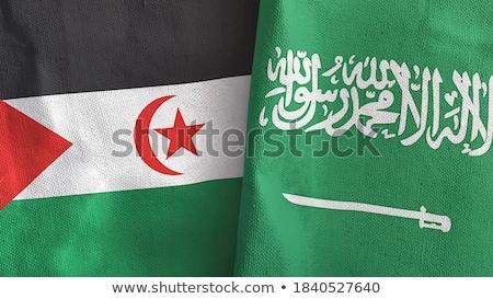 Szaúd-Arábia western Szahara zászlók puzzle izolált Stock fotó © Istanbul2009