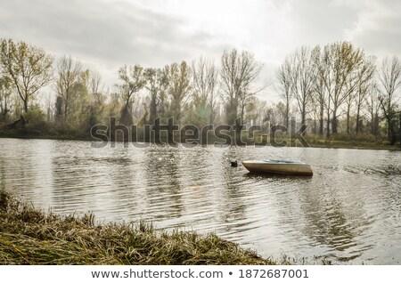 Sozinho danúbio rio primavera tempo Foto stock © mady70