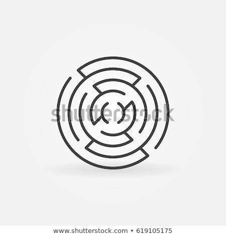 labyrinth thin line vector icon stock photo © smoki