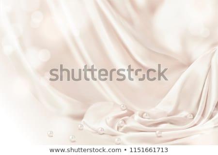 Elegant drapery Stock photo © montego