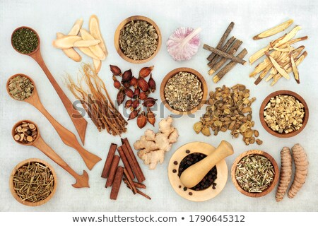 Healthy Food and Herbs to Treat Asthma Stock photo © marilyna