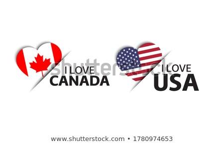 набор два Соединенные Штаты Америки сердце Сток-фото © kurkalukas