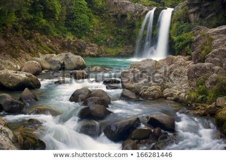 rotsen · park · hoog · kanarie · eiland · tenerife - stockfoto © hofmeester