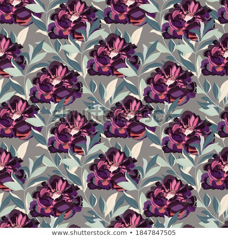 violet graceful fabric stock photo © taden