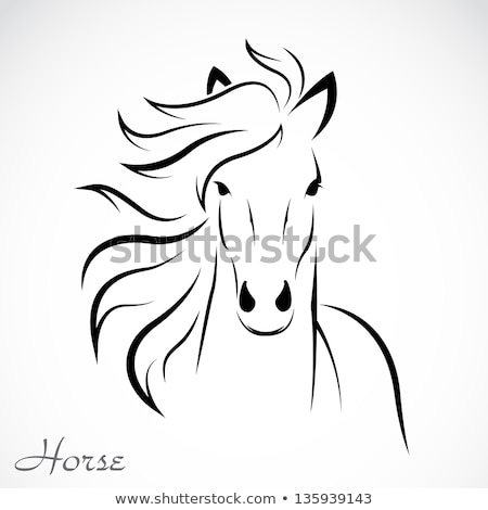 Sign horse isolated on white background Stock photo © smeagorl