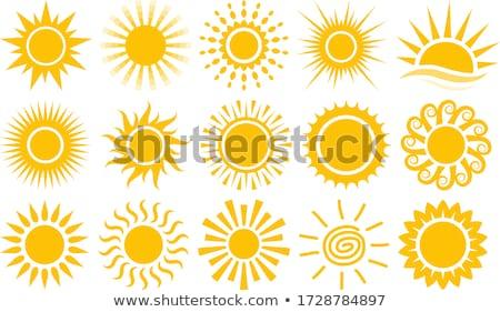 Suns collection Stock photo © Genestro