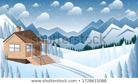 zachód · zimą · trawy · śniegu · dziedzinie - zdjęcia stock © ssuaphoto