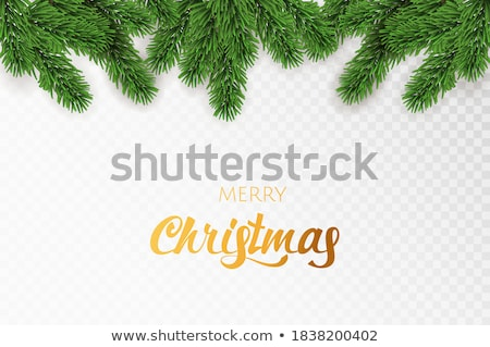Christmas festive background with  spruce branches  Stock photo © Valeriy