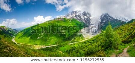 Summer landscape with a mountain top Tetnuldi Stock photo © Kotenko