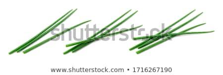 Vers bieslook bladeren witte kom voedsel Stockfoto © Digifoodstock