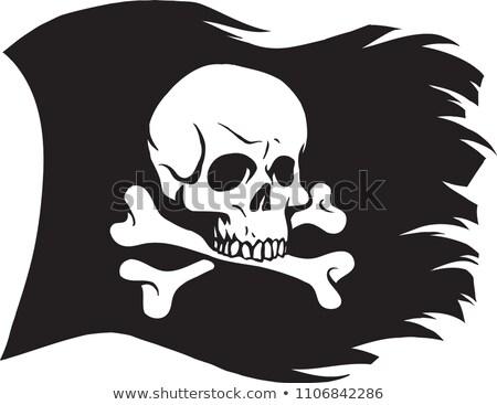 pirata · bandiera · isolato · cielo · blu · mare - foto d'archivio © popaukropa
