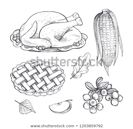 Turkey Dish and Corn Maize Isolated Icons Vector Stock photo © robuart