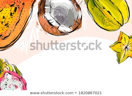 Kokosnoot banaan posters ingesteld vector tekst Stockfoto © robuart
