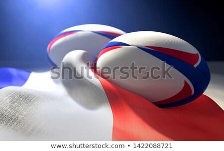 Франция флаг мяч для регби пару два регулярный Сток-фото © albund