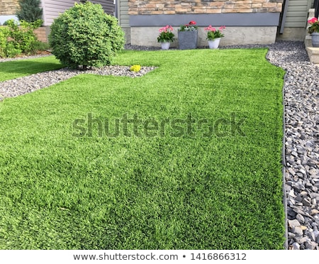 synthetic grass  Stock photo © 808isgreat