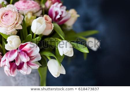 Virág egyezség tulipán kosár tavasz szépség Stock fotó © stevemc