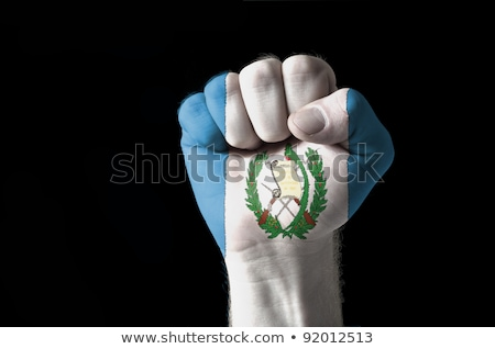 Fist Painted In Colors Of Guatemala Flag Foto stock © vepar5