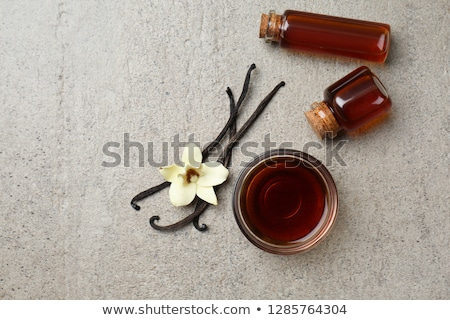 Vanilla extract Stock photo © MKucova