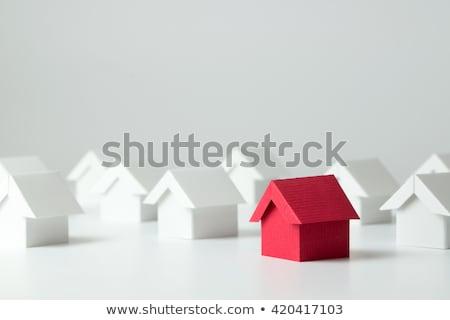 Rood huis 3D gegenereerde foto Blauw Stockfoto © flipfine