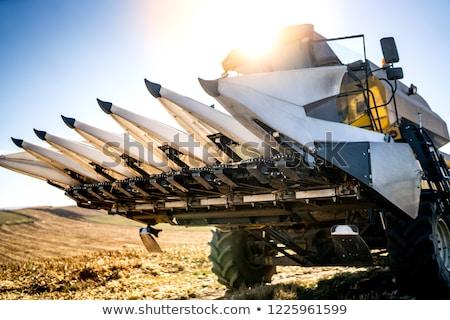 Combine harvester detail Stock photo © stevanovicigor