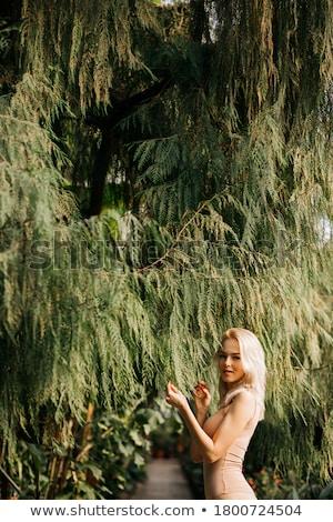 Portret uśmiechnięty Rainforest blond pani Zdjęcia stock © konradbak