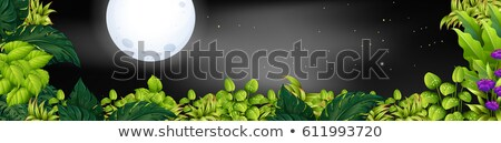Background scene with fullmoon and stars Stock photo © colematt