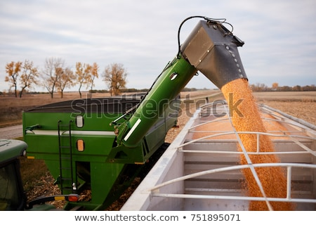 Grain Truck Loaded with Agricultural Production Stock photo © robuart