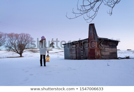 a woman standing in a snow field holding lantern at dusk stock photo © lovleah