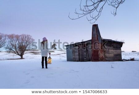 Femme permanent neige domaine lanterne Photo stock © lovleah