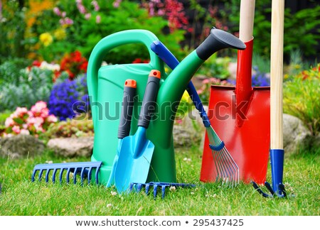 plastic garden shovel stock photo © vichie81