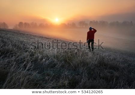 man standing and wathing nature Stock photo © compuinfoto