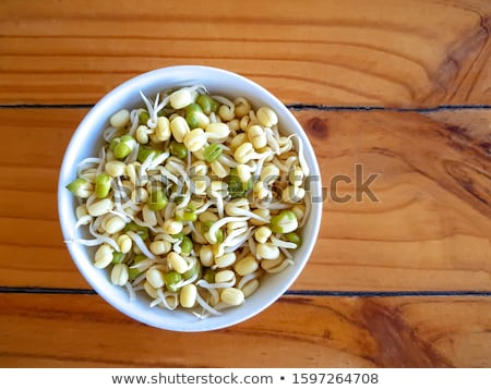 soy bean sprout Stock photo © M-studio