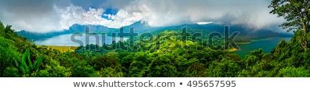 Trópusi dzsungel Bali erdő hegy víz Stock fotó © galitskaya