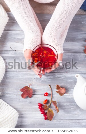 Happy woman holding a teapot Stock photo © imarin