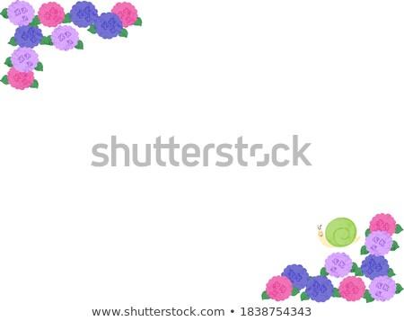 Diagonaal rij groot roze Blauw groene Stockfoto © bobkeenan