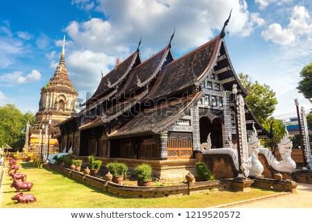 istentisztelet · gyám · szellem · Thaiföld · zöld - stock fotó © timbrk