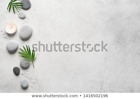 Achtergrond klein natuur Stockfoto © Gordo25