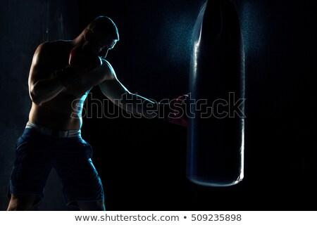 Portre genç erkek boksör ayakta eldiven Stok fotoğraf © wavebreak_media