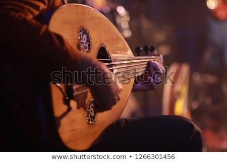 lute Player  Stock photo © smuki