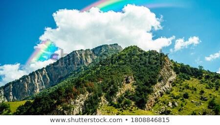 fenomeen · hemel · scène · eenzaam · bomen - stockfoto © zzve