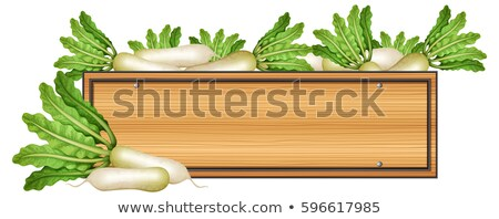 Wooden sign with white radish Stock photo © bluering