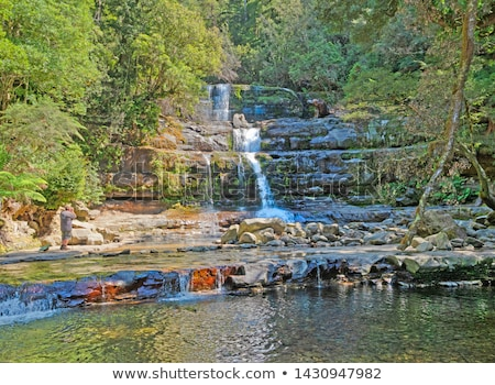Liffey Falls in the Midlands Region, Tasmania Stock photo © artistrobd