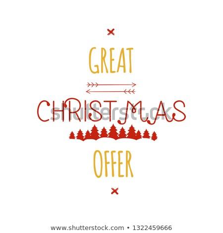 karácsony · ajánlat · boldog · lány · mikulás · sapka · piros - stock fotó © jeksongraphics