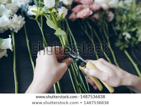 неузнаваемый женщины флорист стороны Сток-фото © pressmaster