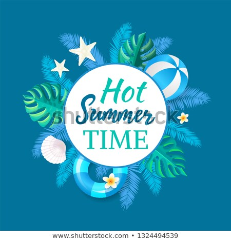 verano · playa · fiesta · banner · vector · cartel - foto stock © robuart
