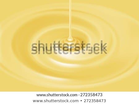 バニラ カスタード チョコレート デザート クリーム 務め ストックフォト © aladin66