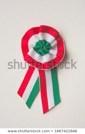 Hungary rosette flag Stock photo © milsiart