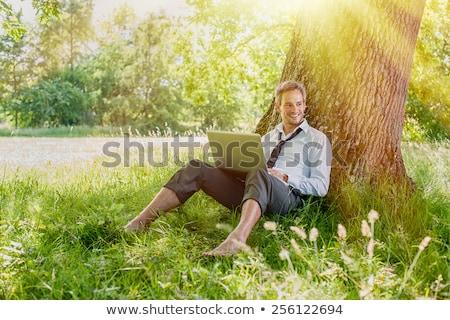 lächelnd · Geschäftsmann · arbeiten · Computer · Business · Tabelle - stock foto © wavebreak_media