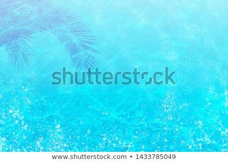 nyári · szabadság · kókusz · kókuszpálma · tengerpart · kék · eps - stock fotó © kotenko